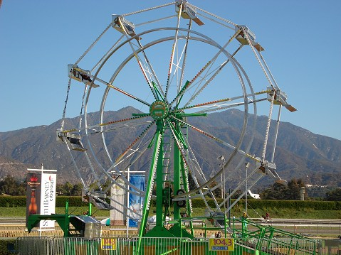50 ft Ferris Wheel