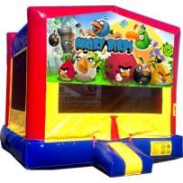13x13 Angry Birds