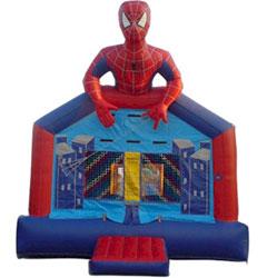 Spiderman 13X13