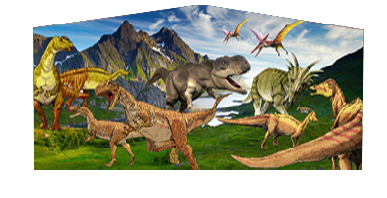 Dinosaurs Photo