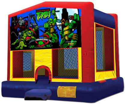 13x13 Ninja Turtles