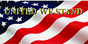 American Flag #1